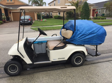 rain cart